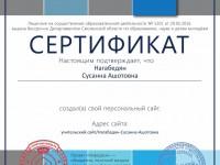 Сертификат проекта infourok.ru № АA-1111546